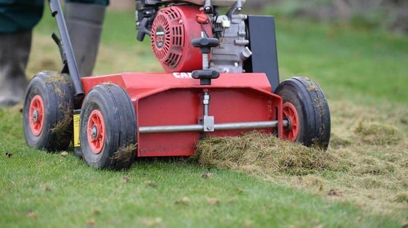 how to scarify a lawn