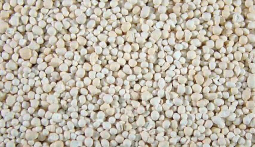 granular lawn feed