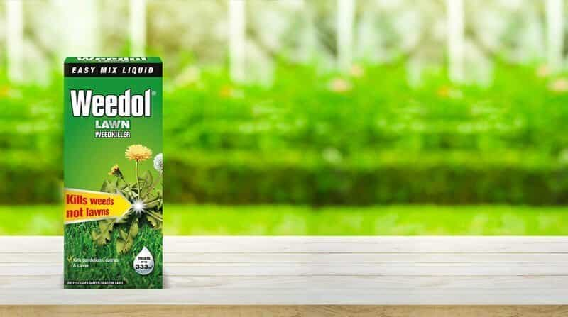 best lawn weed killer concentrate
