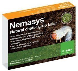 nemasys chafer grub killer