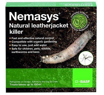 nemasys leatherjacket killer
