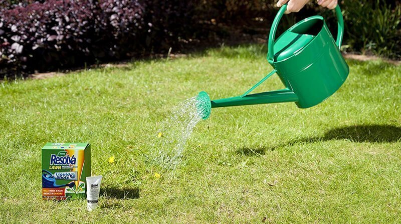 best grass weed killer