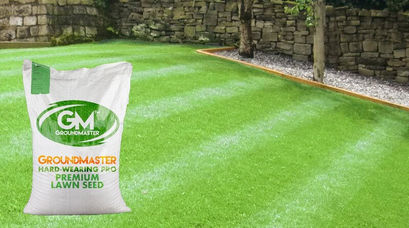 Ground master hard wearing grass seed