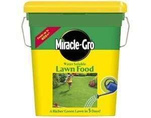 the best liquid lawn feed