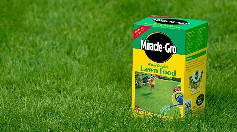 miracle gro lawn food