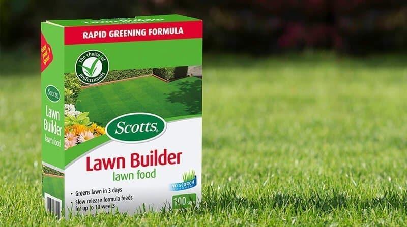 best lawn food