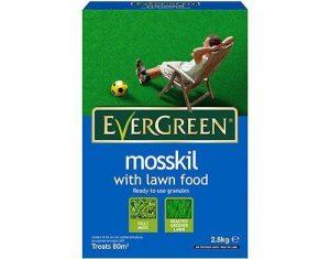 evergreen mosskil