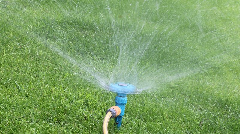 how to water the lawn