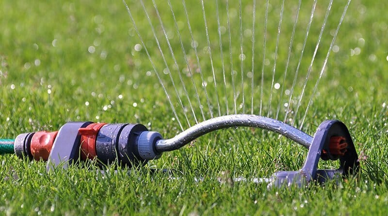don't over water the lawn