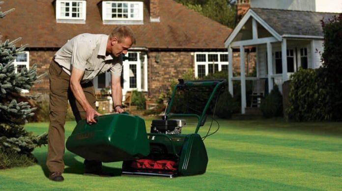 best cylinder lawn mower