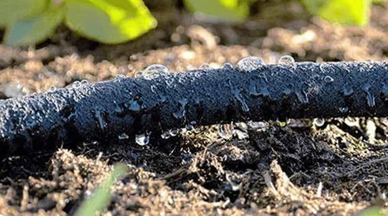 hydrosure soaker hose
