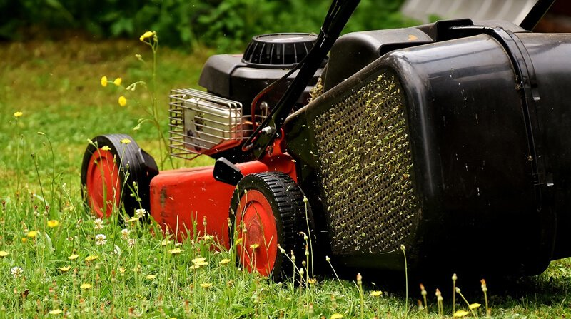 how infrequent mowing can damage a lawn