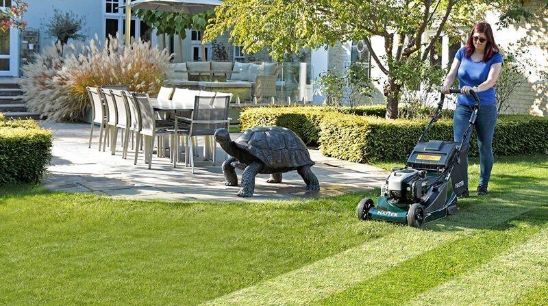lawn calendar