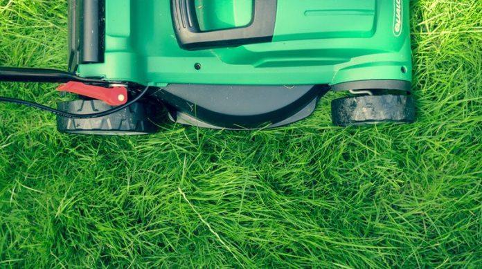 how to cut long grass