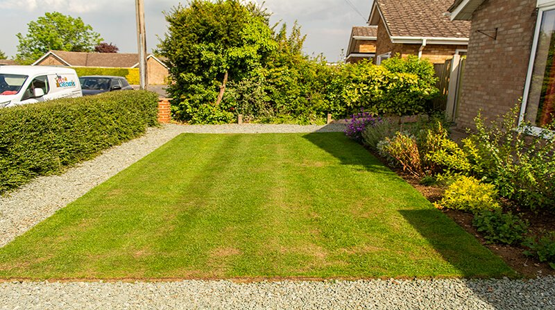 patch magic test lawn with bald patches