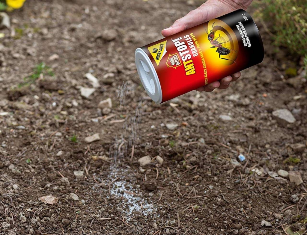 howto destroy ants nest in garden